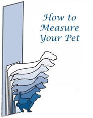 measuring your pet